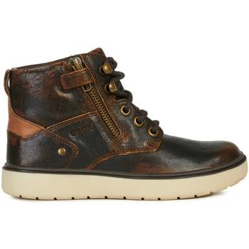 Sapatos Criança Botas baixas Geox J947SA 0JHMW Castanho