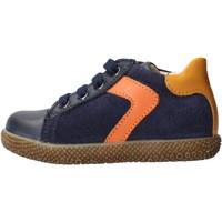 Sapatos Rapaz Sapatilhas Falcotto - Polacchino blu/arancione MISU-1C25 BLU