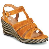 Sapatos Mulher Sandálias Adige FLORY V4 UNDER SAFRAN Amarelo