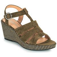 Sapatos Mulher Sandálias Adige FLORY V5 VELOURS MILITAIRE Cáqui