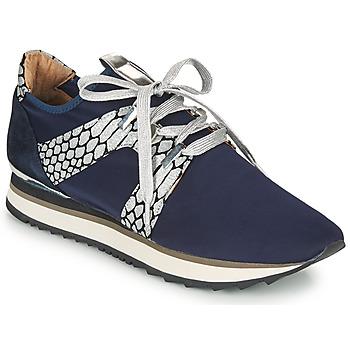 Sapatos Mulher Sapatilhas Adige XAN V4 KOI SILVER Azul