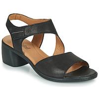 Sapatos Mulher Sandálias Josef Seibel JUNA 02 Preto