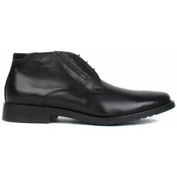 Sapatos Homem Botas baixas Salamander Adam Flats Black
