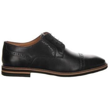 Sapatos Homem Sapatos Salamander Vasco Flats Black