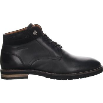 Sapatos Homem Botas baixas Salamander Vasco-Aw Flats Black