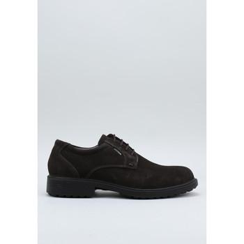Sapatos Homem Sapatos Imac 600349 Castanho