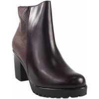 Sapatos Mulher Botins Bellatrix Senhora  14570 marrom Castanho