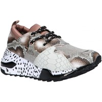 Sapatos Mulher Multi-desportos Steve Madden CLIFF SM11000185 Marr?n