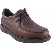 Sapatos Homem Mocassins Riverty Sapato  640 marrom Castanho
