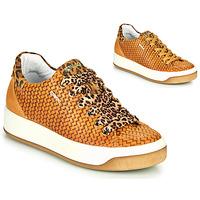 Sapatos Mulher Sapatilhas IgI&CO SHOUHAI Amarelo