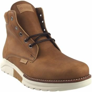 Sapatos Homem Botas baixas Riverty masculinos  3213 tostados Castanho