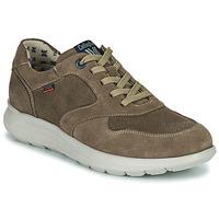 Sapatos Homem Sapatilhas CallagHan WASSER Bege