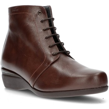 Sapatos Mulher Botins Dtorres OTTAWA LACE BOOTS TABACO