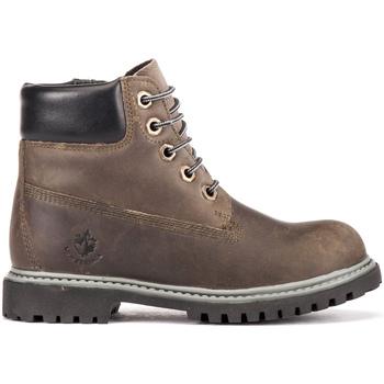 Sapatos Criança Botas baixas Lumberjack SB00101 016 H01 Castanho