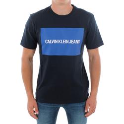Textil Homem T-Shirt mangas curtas Calvin Klein Jeans J30J307850 904 NAVY Azul marino