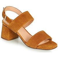 Sapatos Mulher Sandálias Fericelli MARRAK Camel