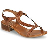 Sapatos Mulher Sandálias Hispanitas LOLA Castanho