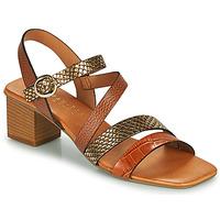 Sapatos Mulher Sandálias Hispanitas OLGA Castanho / Bronze