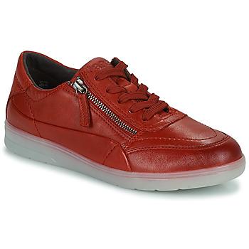 Sapatos Mulher Sapatilhas Jana PHOEBIA Vermelho