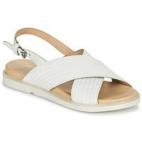 Sapatos Mulher Sandálias Mjus KETTA Branco