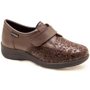 Sapatos Mulher Sapatos & Richelieu Calzamedi CONFORTÁVEIS DIABÉTICOS MEIAS ELÁSTICAS MARRON
