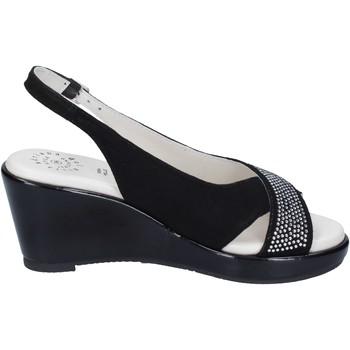 Sapatos Mulher Sandálias Adriana Del Nista Sandálias BJ04 Preto