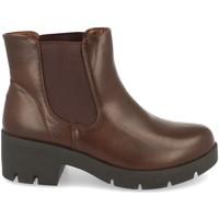 Sapatos Mulher Botins Clowse 8B991 Marron