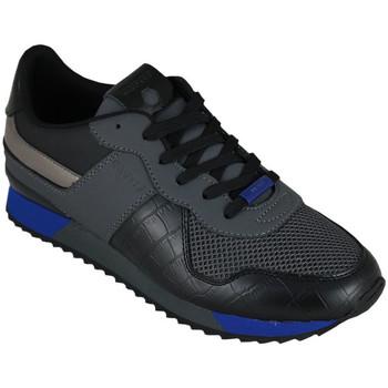 Sapatos Homem Sapatilhas Cruyff cosmo dk.grey/max blue Preto
