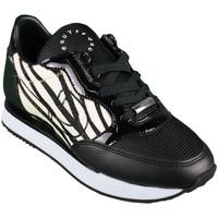 Sapatos Mulher Sapatilhas de corrida Cruyff parkrunner cc4931203190 Preto