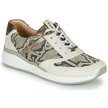 Sapatos Rapariga Sapatilhas de cano-alto JB Martin 1KALIO Bege