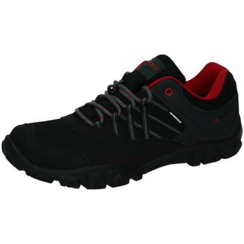 Sapatos Homem Sapatilhas Nicoboco  Preto