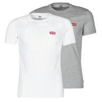 Textil Homem T-Shirt mangas curtas Levi's 2PK CREWNECK GRAPHIC Branco