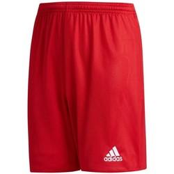 Textil Rapaz Shorts / Bermudas adidas Originals JR Parma 16 Vermelho