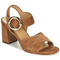 Sapatos Mulher Sandálias JB Martin 1NICKY Castanho