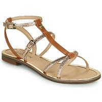 Sapatos Mulher Sandálias JB Martin 1GRIOTTES Castanho