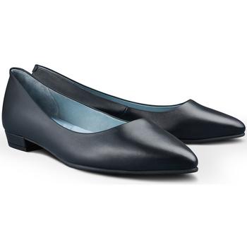 Sapatos Mulher Sabrinas Skypro Tania Soni Azul