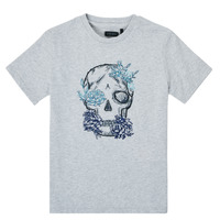 Textil Rapaz T-Shirt mangas curtas Ikks XS10243-21-C Cinza