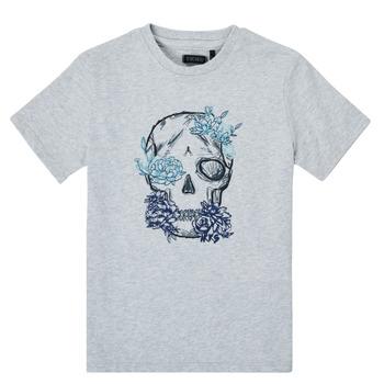 Textil Rapaz T-Shirt mangas curtas Ikks XS10243-21-J Cinza