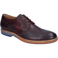 Sapatos Homem Sapatos & Richelieu Herman & Sons Clássico BJ33 Tolet