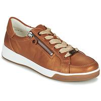 Sapatos Mulher Sapatilhas Ara ROM-HIGHSOFT Castanho