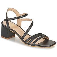 Sapatos Mulher Sandálias Betty London OCHANTE Preto