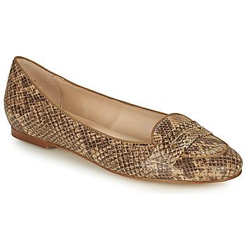 Sapatos Mulher Sabrinas Betty London OVINOU Toupeira