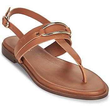 Sapatos Mulher Sandálias Minelli LIZA Castanho