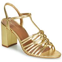 Sapatos Mulher Sandálias Minelli THERENA Ouro