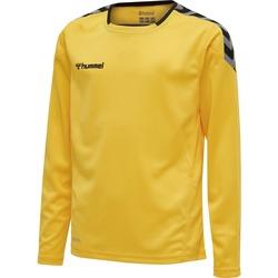 Textil Criança T-shirt mangas compridas Hummel Maillot  enfant manches longues Authentic HML jaune/noir