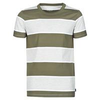 Textil Homem T-Shirt mangas curtas Esprit T-SHIRTS Cáqui