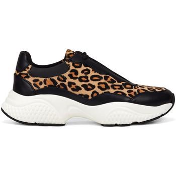 Sapatos Mulher Sapatilhas Ed Hardy - Insert runner-wild black/leopard Preto