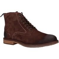 Sapatos Homem Botas baixas Kickers 828860 ALPHATO Marr?n