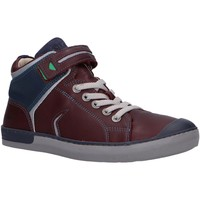 Sapatos Rapaz Sapatilhas de cano-alto Kickers 830090 IRELAS Marr?n
