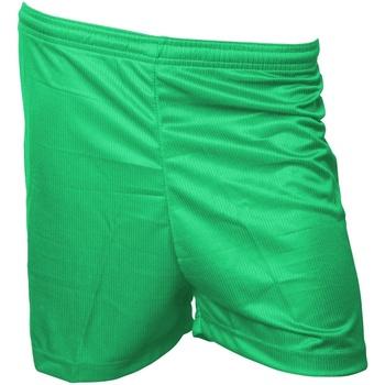 Textil Homem Shorts / Bermudas Precision  Verde